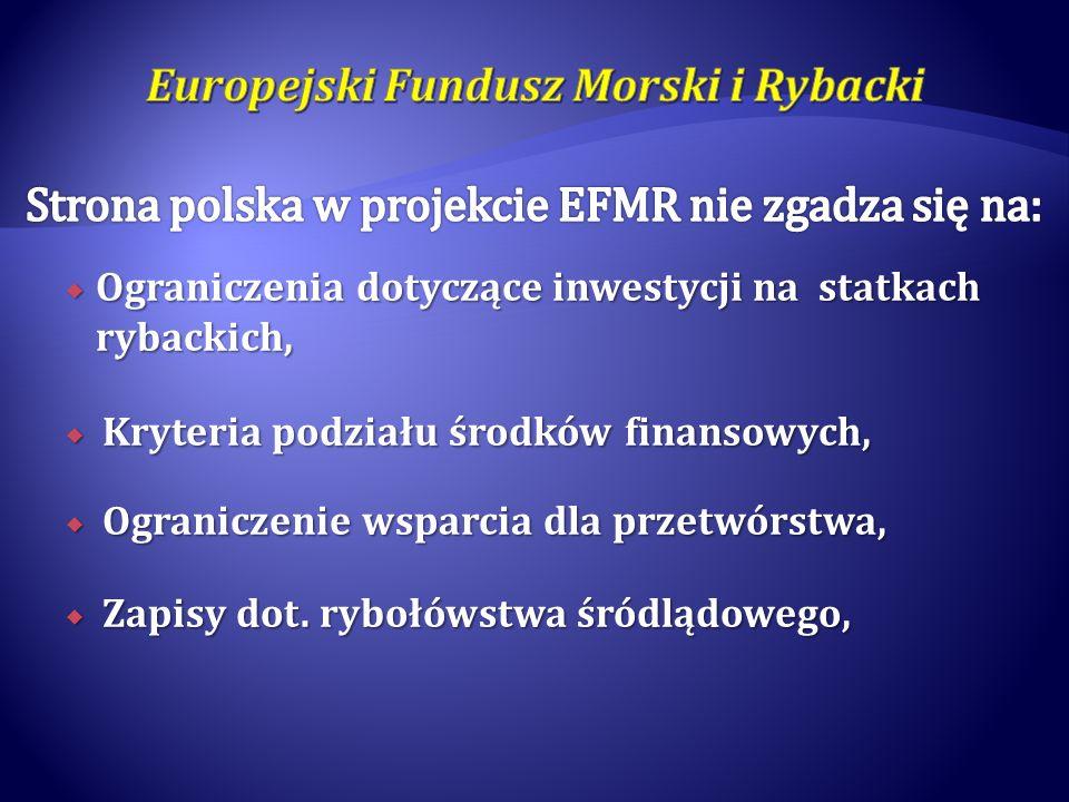 Strona polska w projekcie EFMR nie zgadza się na: