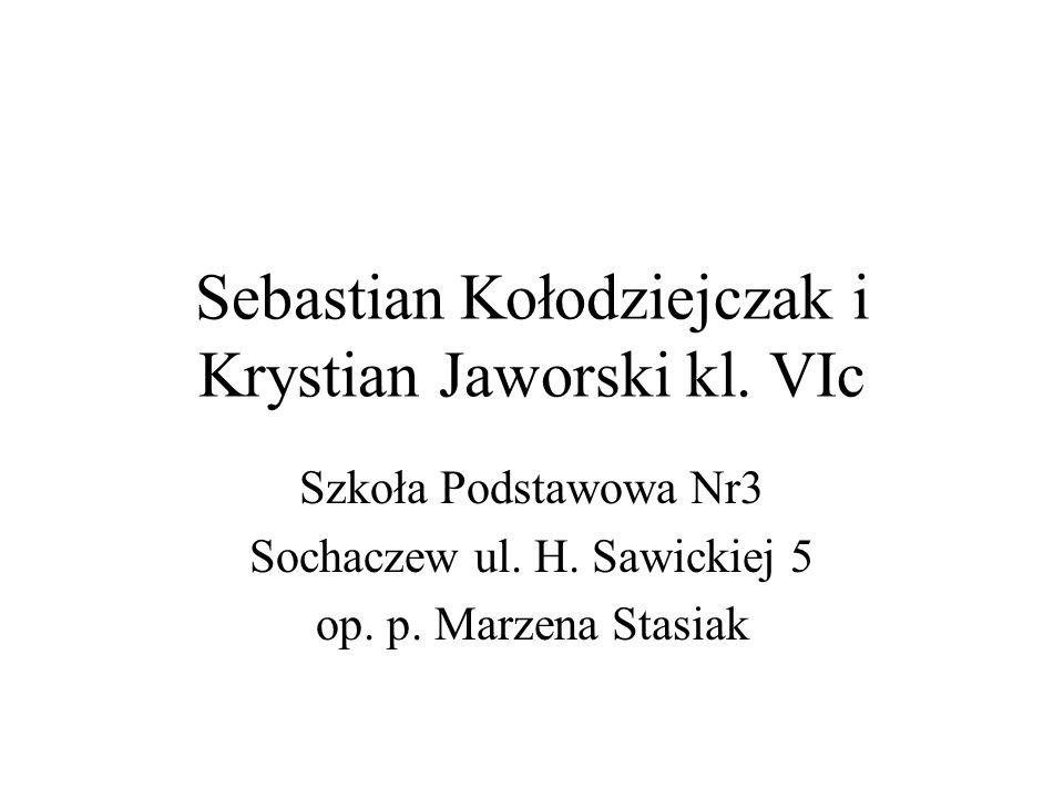 Sebastian Kołodziejczak i Krystian Jaworski kl. VIc