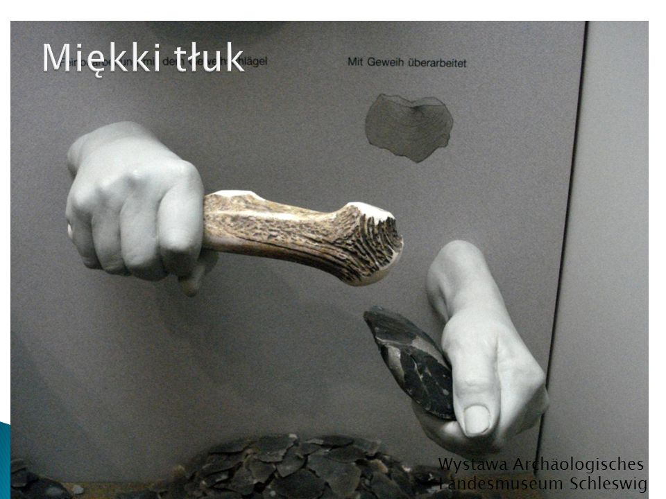 Miękki tłuk Wystawa Archäologisches Landesmuseum Schleswig