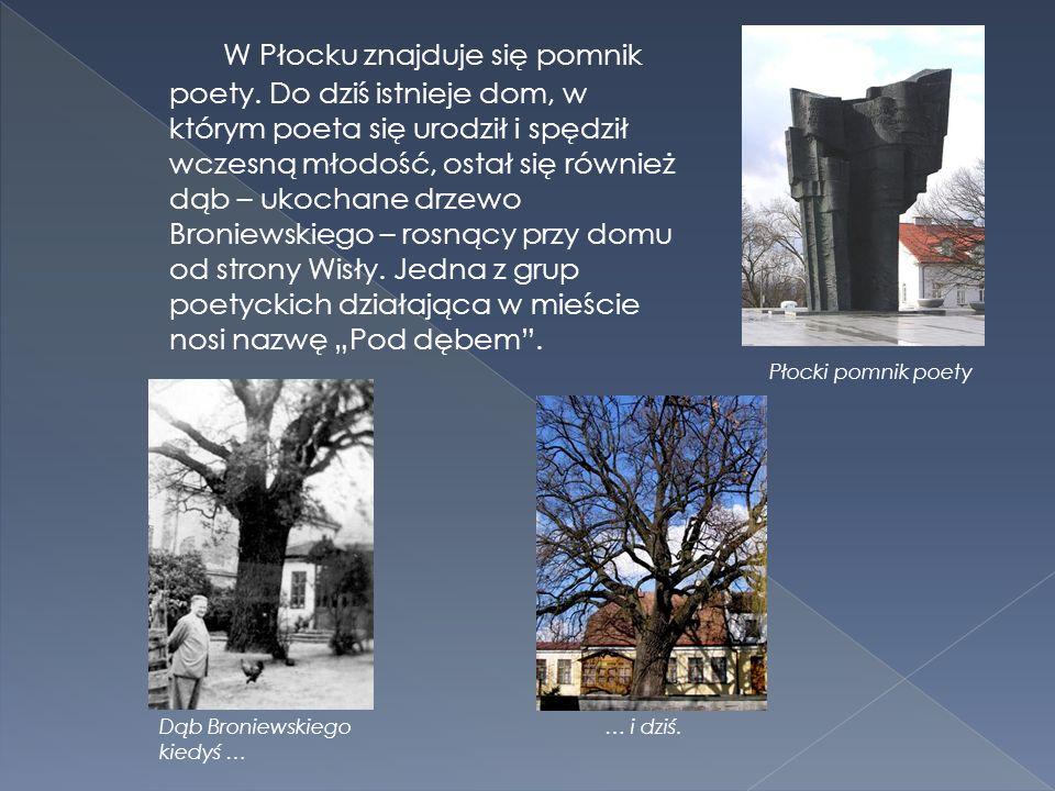 W Płocku znajduje się pomnik poety