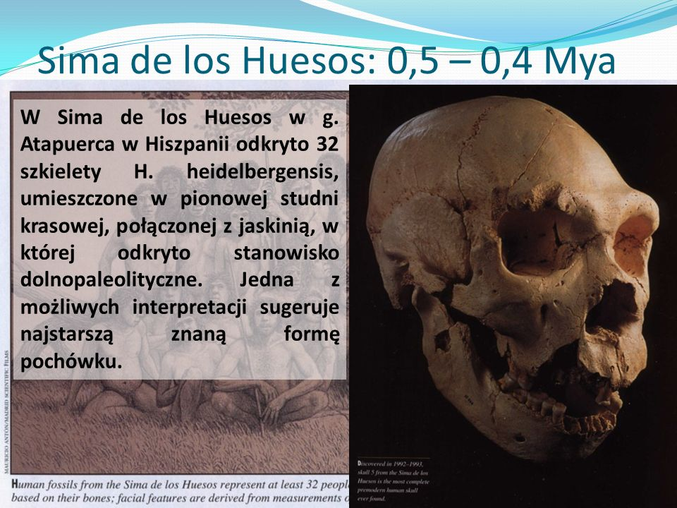 Sima de los Huesos: 0,5 – 0,4 Mya