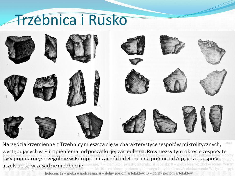Trzebnica i Rusko Najstarsze ślady zasiedlenia ziem polskich, datowane są niejednoznacznie, być może ich wiek przekracza 500 tys. lat.