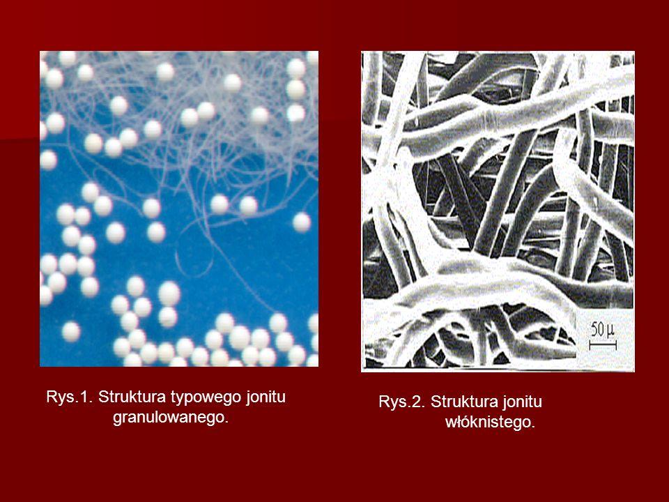 Rys.1. Struktura typowego jonitu granulowanego.