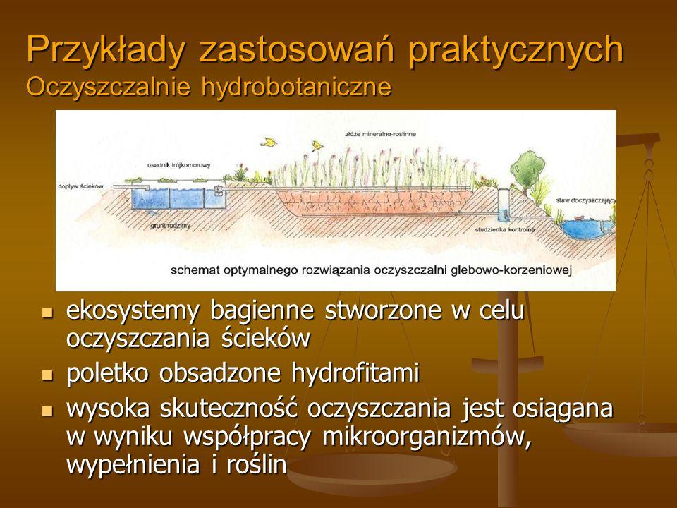 Przykłady zastosowań praktycznych Oczyszczalnie hydrobotaniczne