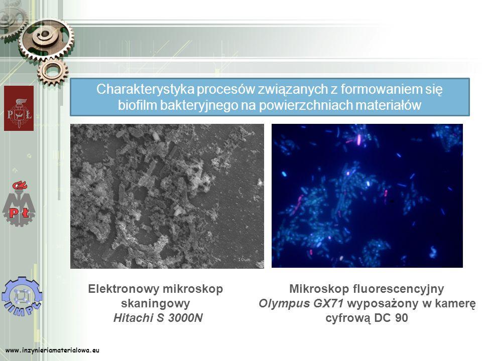 Elektronowy mikroskop skaningowy Hitachi S 3000N