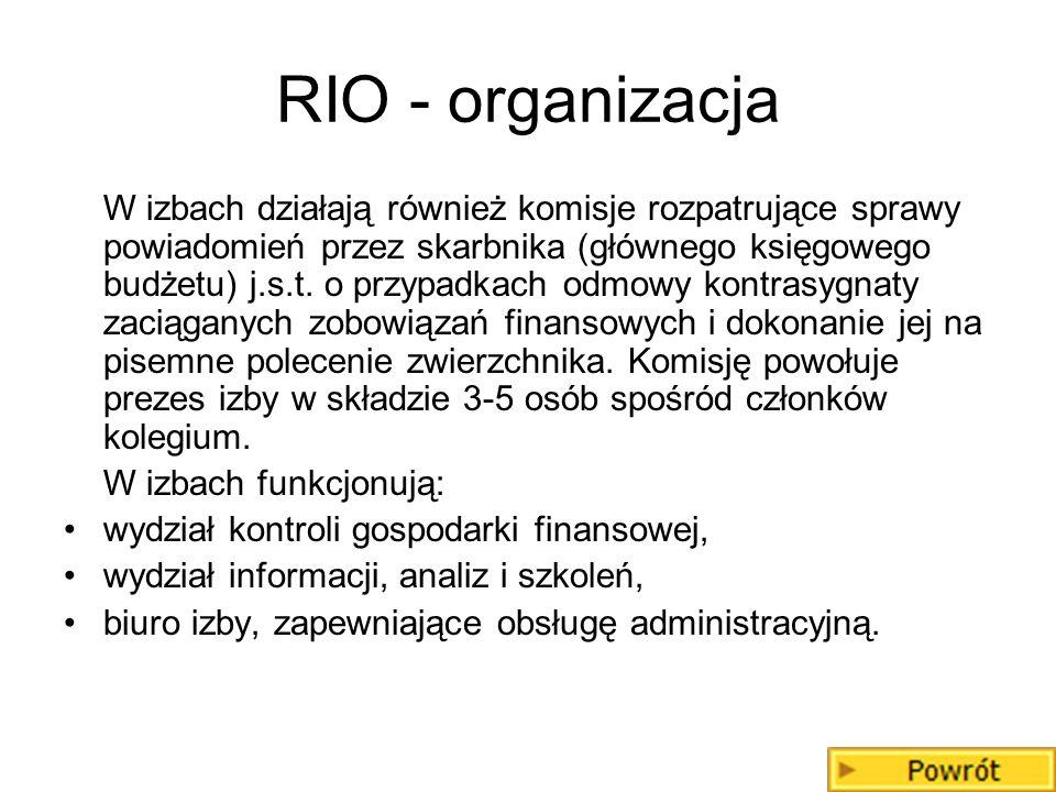 RIO - organizacja