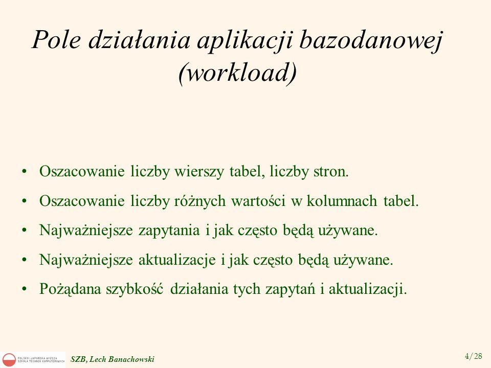Pole działania aplikacji bazodanowej (workload)