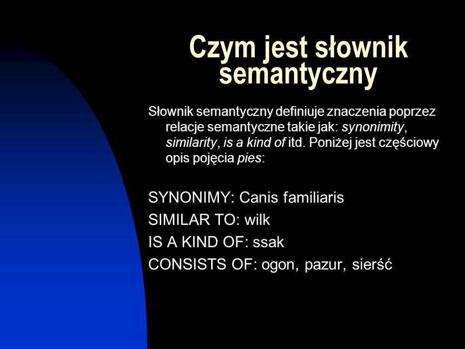 Czym jest słownik semantyczny