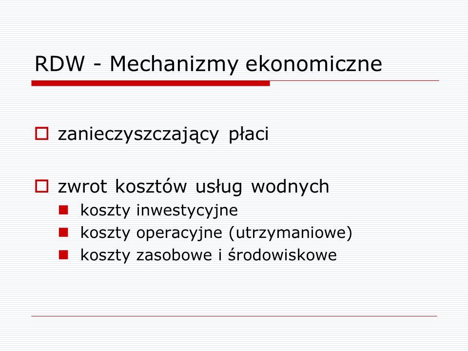 RDW - Mechanizmy ekonomiczne