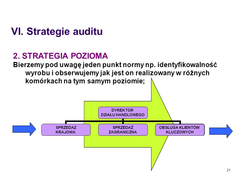 VI. Strategie auditu 2. STRATEGIA POZIOMA