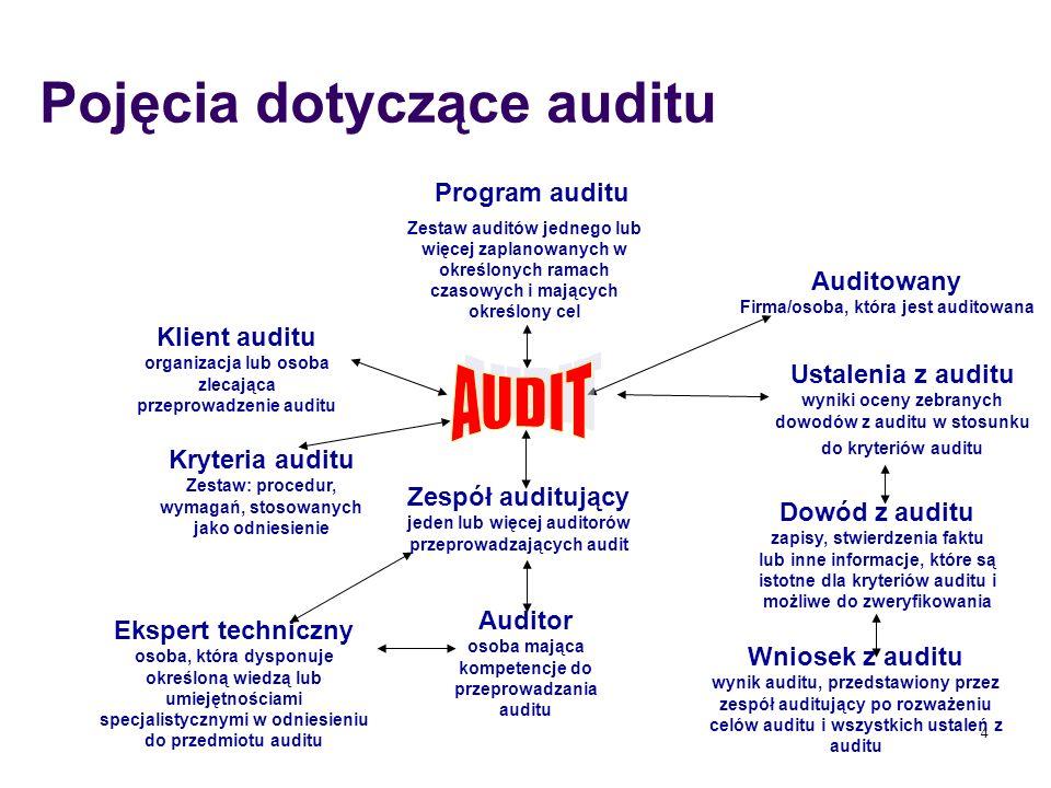 Pojęcia dotyczące auditu