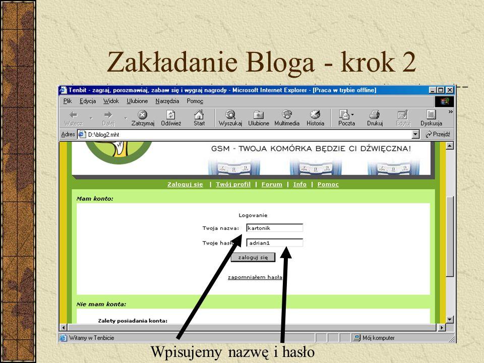Zakładanie Bloga - krok 2