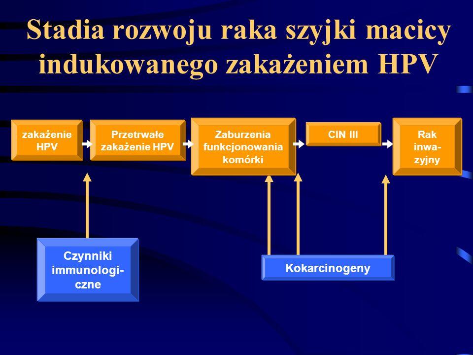Stadia rozwoju raka szyjki macicy indukowanego zakażeniem HPV