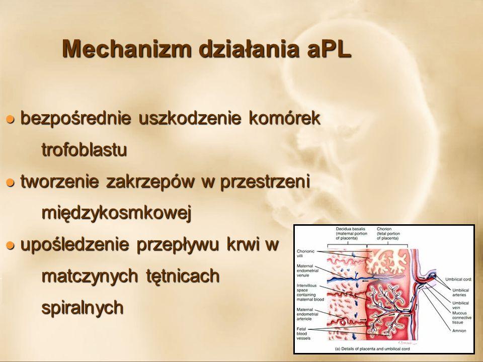 Mechanizm działania aPL