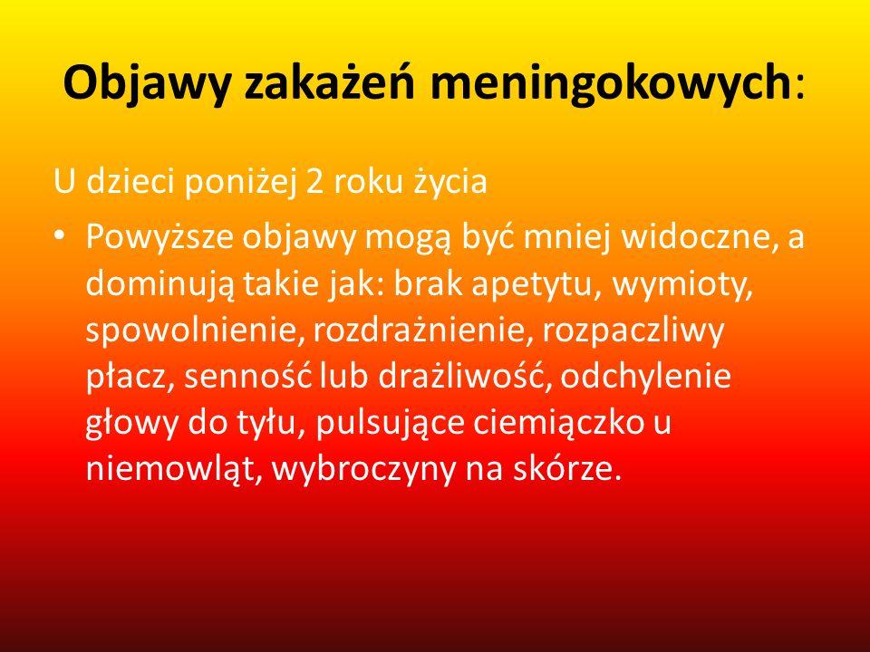 Objawy zakażeń meningokowych: