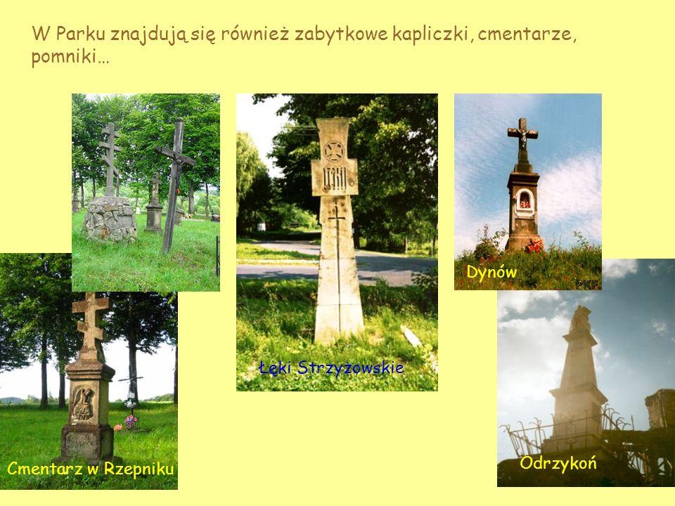 W Parku znajdują się również zabytkowe kapliczki, cmentarze, pomniki…