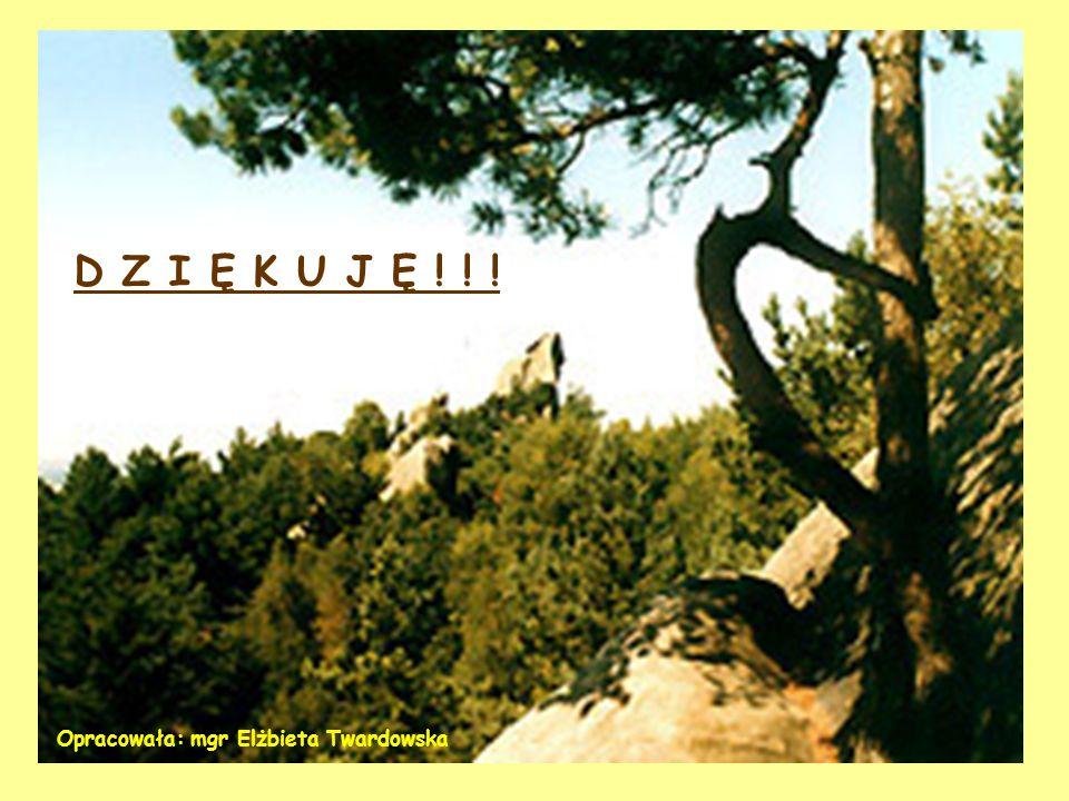 D Z I Ę K U J Ę ! ! ! Opracowała: mgr Elżbieta Twardowska