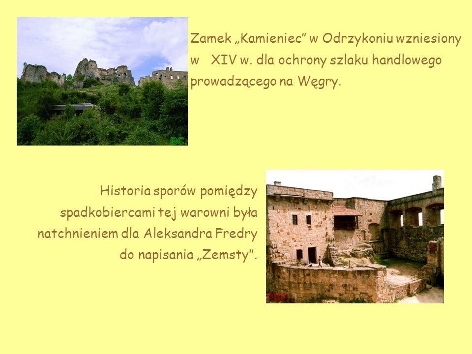 """Zamek """"Kamieniec w Odrzykoniu wzniesiony w XIV w"""