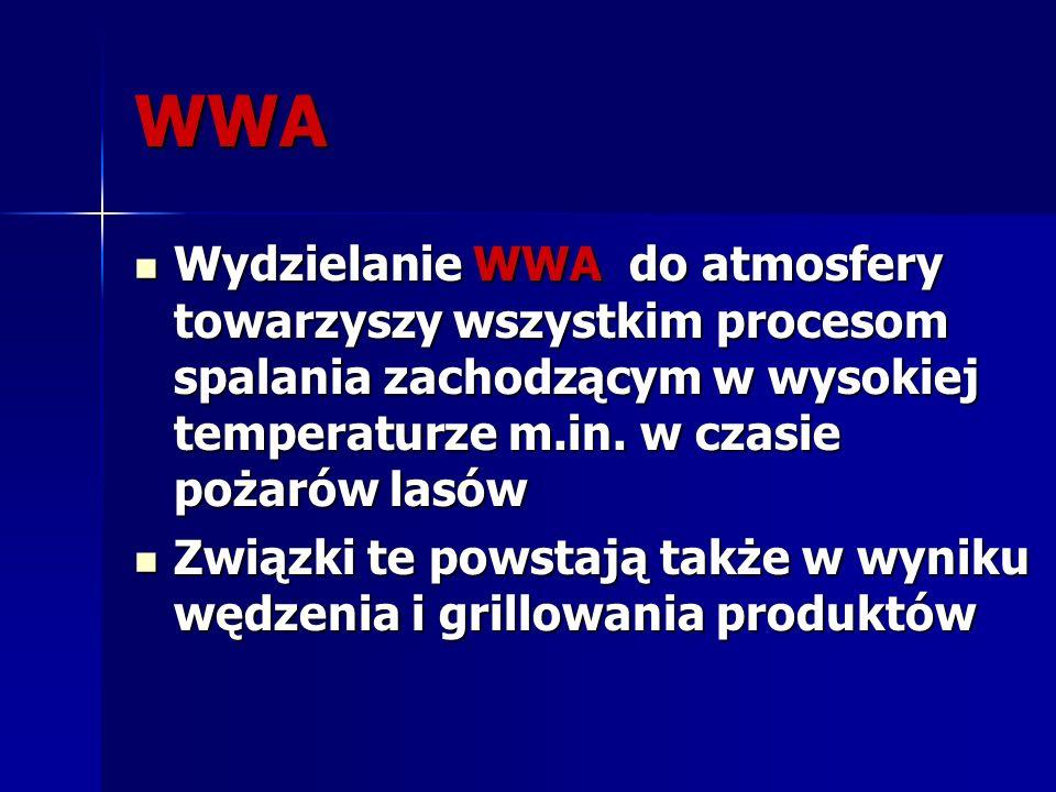 WWA Wydzielanie WWA do atmosfery towarzyszy wszystkim procesom spalania zachodzącym w wysokiej temperaturze m.in. w czasie pożarów lasów.