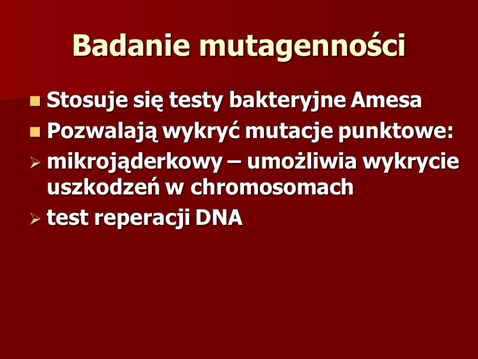 Badanie mutagenności Stosuje się testy bakteryjne Amesa
