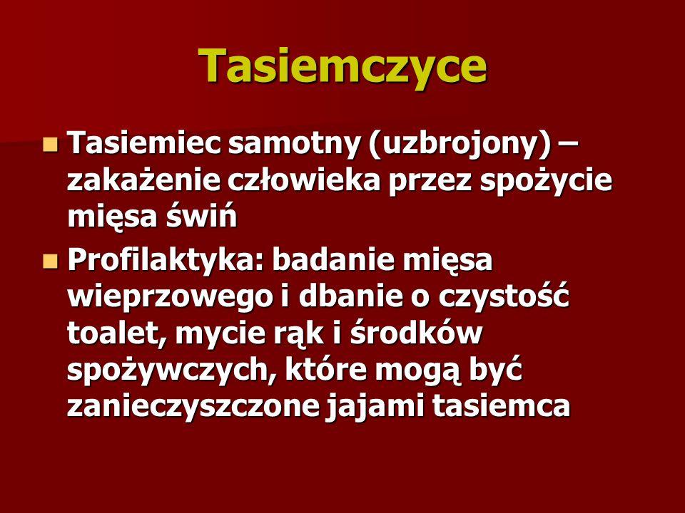 Tasiemczyce Tasiemiec samotny (uzbrojony) – zakażenie człowieka przez spożycie mięsa świń.