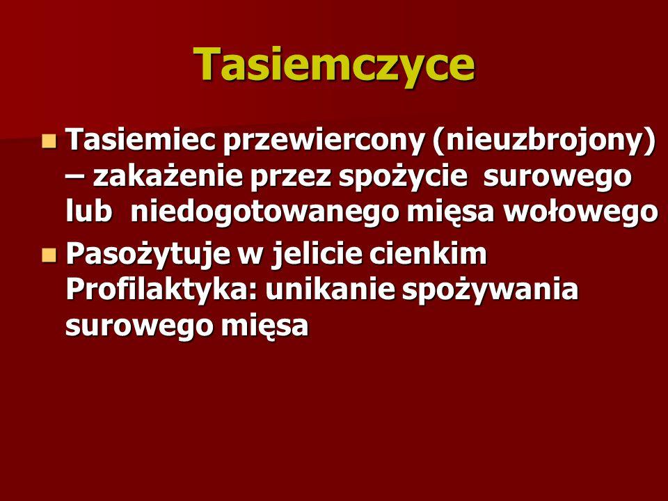Tasiemczyce Tasiemiec przewiercony (nieuzbrojony) – zakażenie przez spożycie surowego lub niedogotowanego mięsa wołowego.