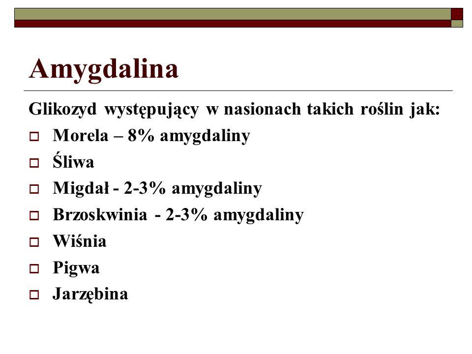 Amygdalina Glikozyd występujący w nasionach takich roślin jak:
