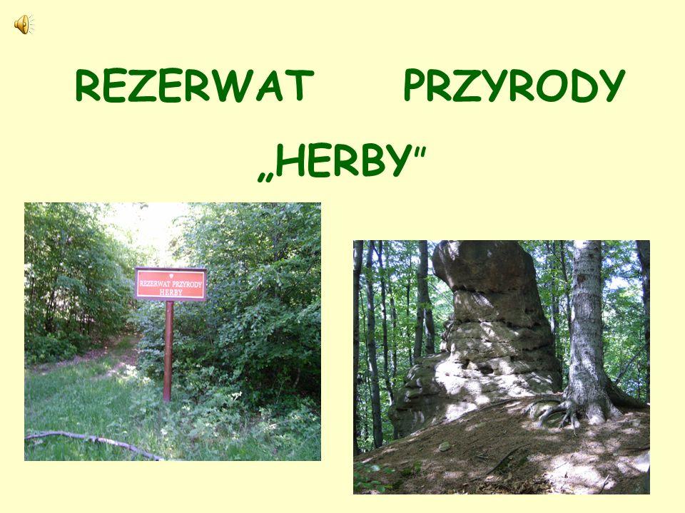 """REZERWAT PRZYRODY """"HERBY"""