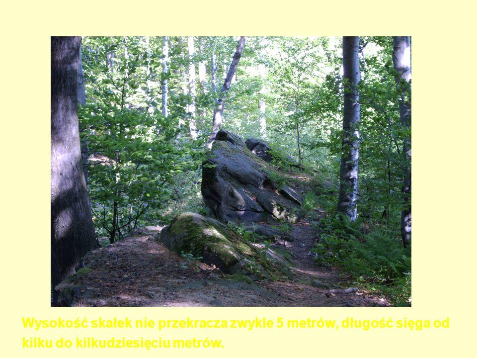 Wysokość skałek nie przekracza zwykle 5 metrów, długość sięga od kilku do kilkudziesięciu metrów.