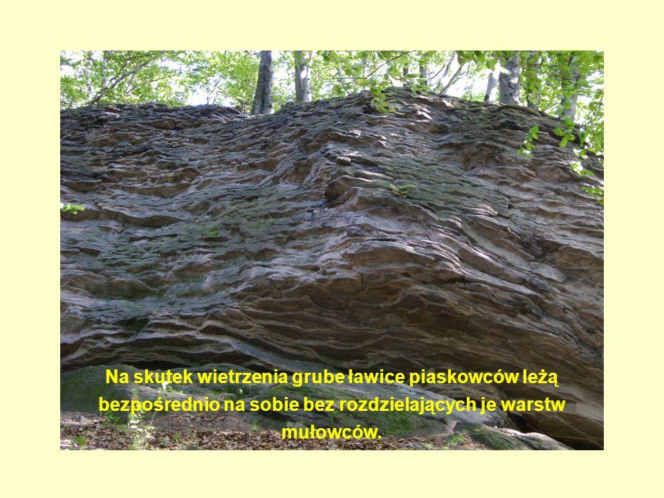 Na skutek wietrzenia grube ławice piaskowców leżą bezpośrednio na sobie bez rozdzielających je warstw mułowców.