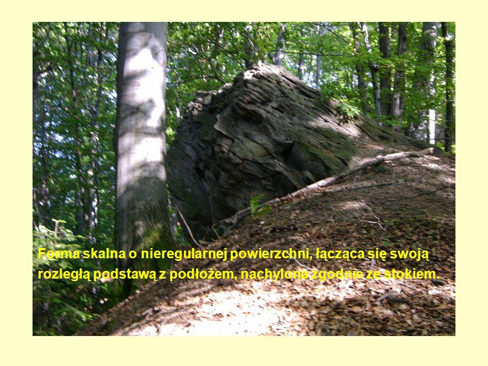 Forma skalna o nieregularnej powierzchni, łącząca się swoją rozległą podstawą z podłożem, nachylona zgodnie ze stokiem.