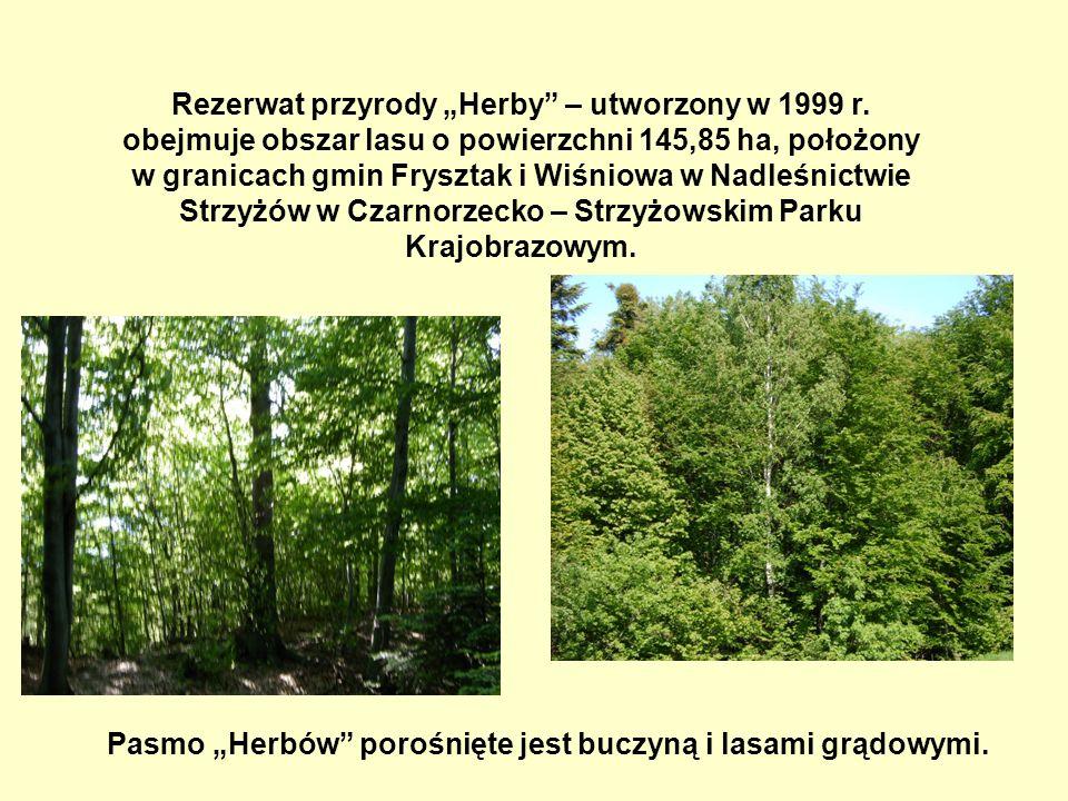 """Rezerwat przyrody """"Herby – utworzony w 1999 r"""