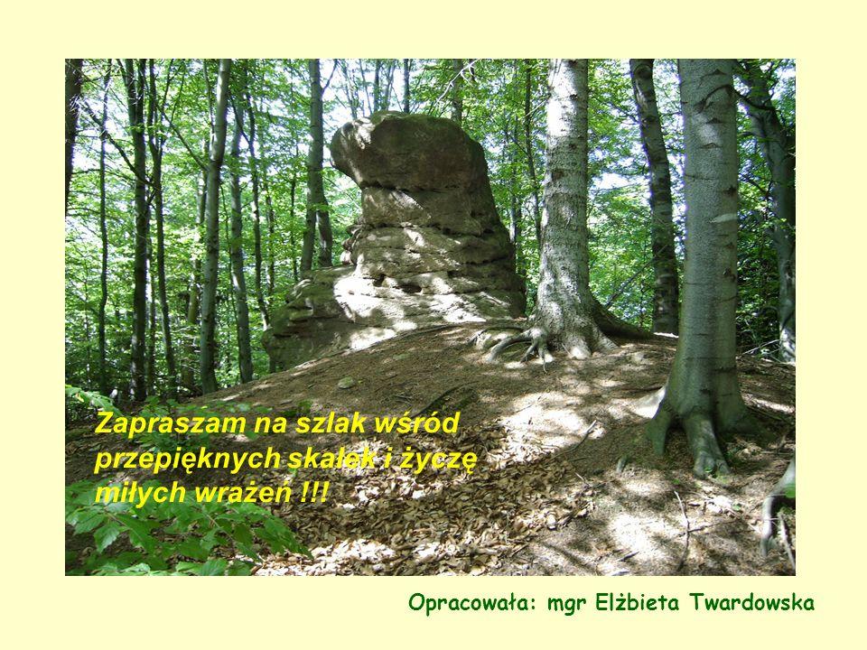 Zapraszam na szlak wśród przepięknych skałek i życzę miłych wrażeń !!!
