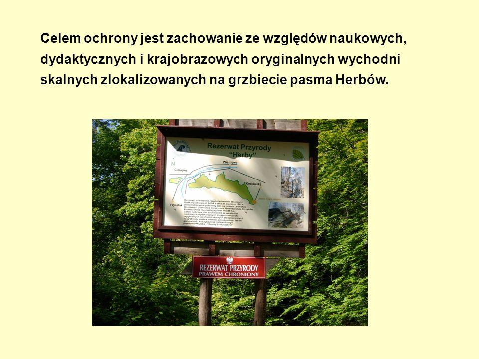 Celem ochrony jest zachowanie ze względów naukowych, dydaktycznych i krajobrazowych oryginalnych wychodni skalnych zlokalizowanych na grzbiecie pasma Herbów.