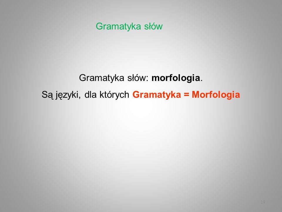 Gramatyka słów: morfologia.