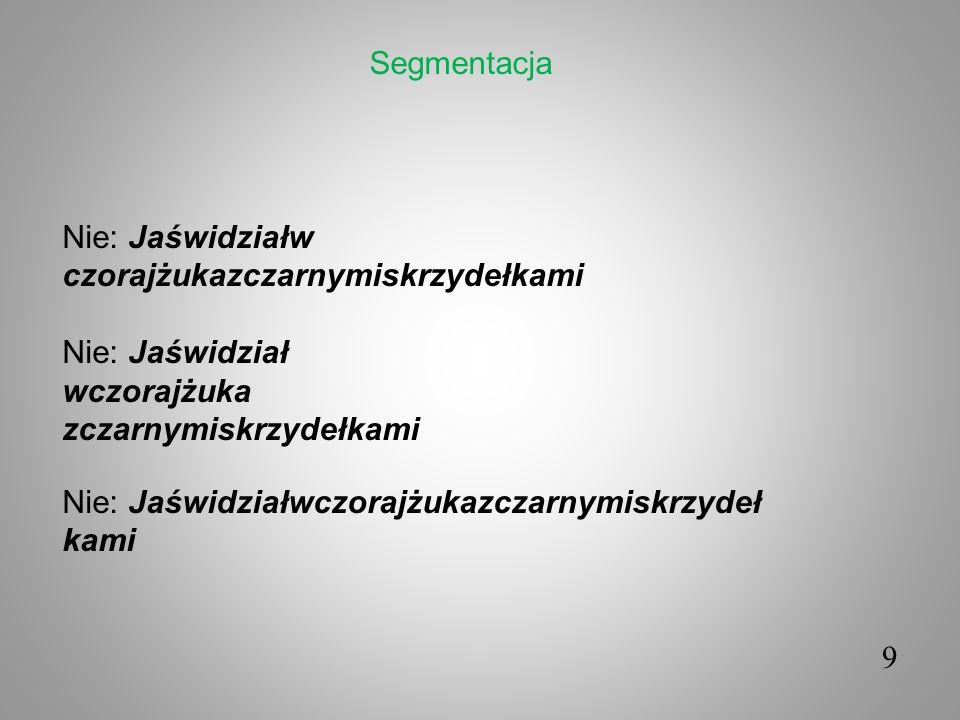 Segmentacja