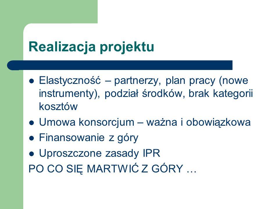 Realizacja projektuElastyczność – partnerzy, plan pracy (nowe instrumenty), podział środków, brak kategorii kosztów.