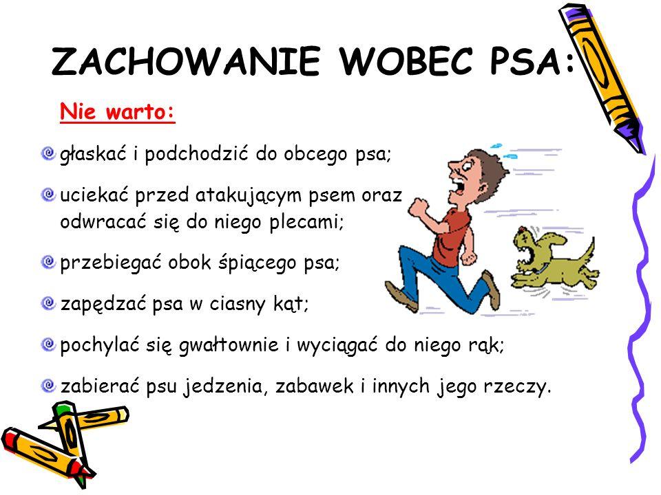 ZACHOWANIE WOBEC PSA: Nie warto: głaskać i podchodzić do obcego psa;