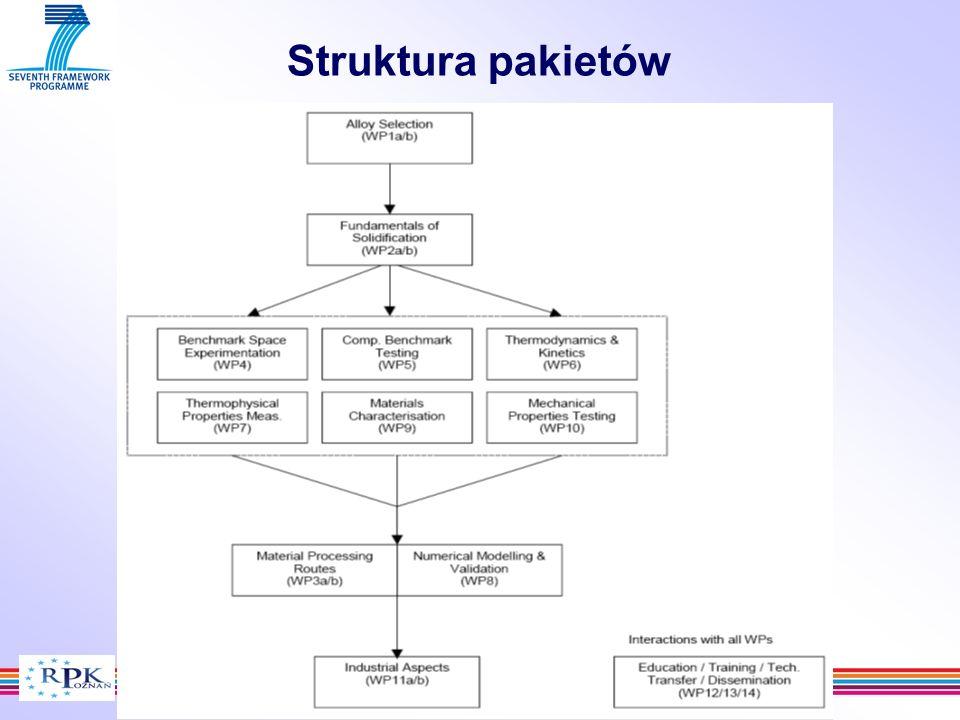 Struktura pakietów