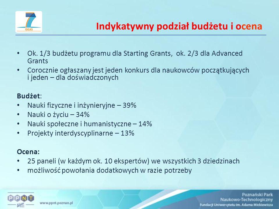 Indykatywny podział budżetu i ocena