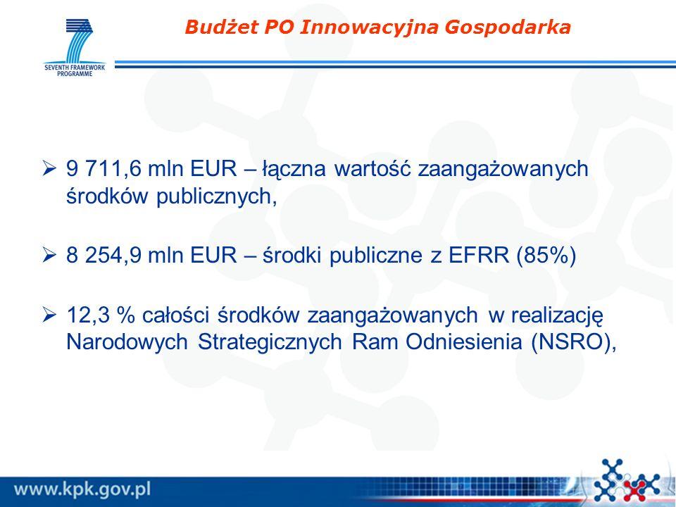 Budżet PO Innowacyjna Gospodarka