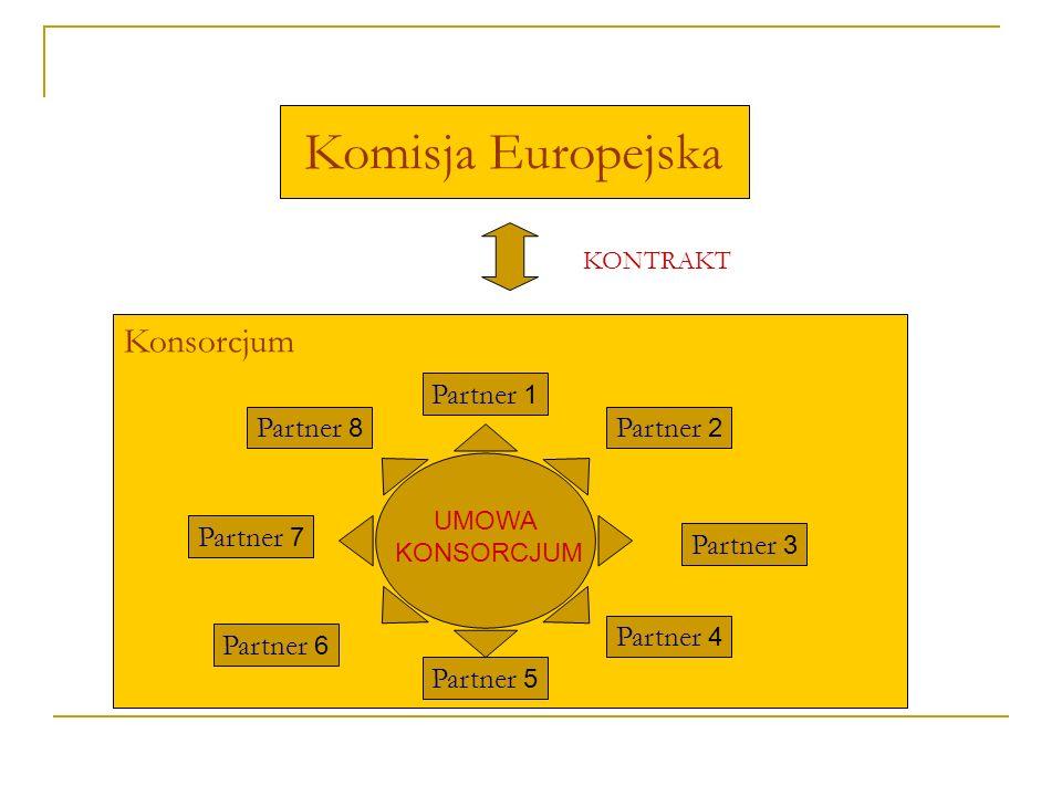 Komisja Europejska Konsorcjum Partner 1 Partner 8 Partner 2 Partner 7