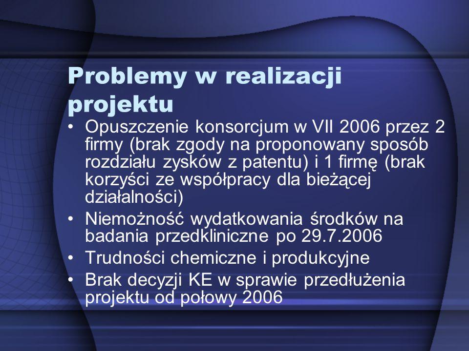 Problemy w realizacji projektu