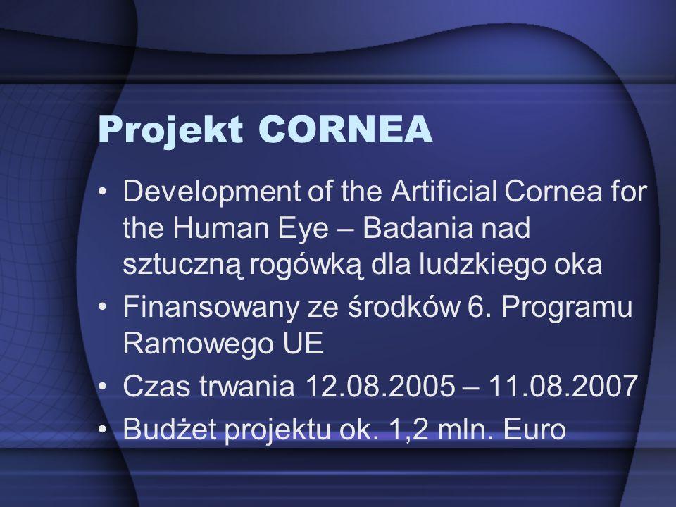 Projekt CORNEA Development of the Artificial Cornea for the Human Eye – Badania nad sztuczną rogówką dla ludzkiego oka.