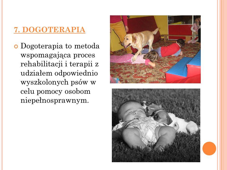 7. DOGOTERAPIA
