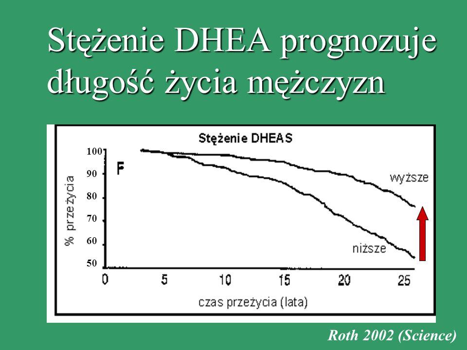 Stężenie DHEA prognozuje długość życia mężczyzn