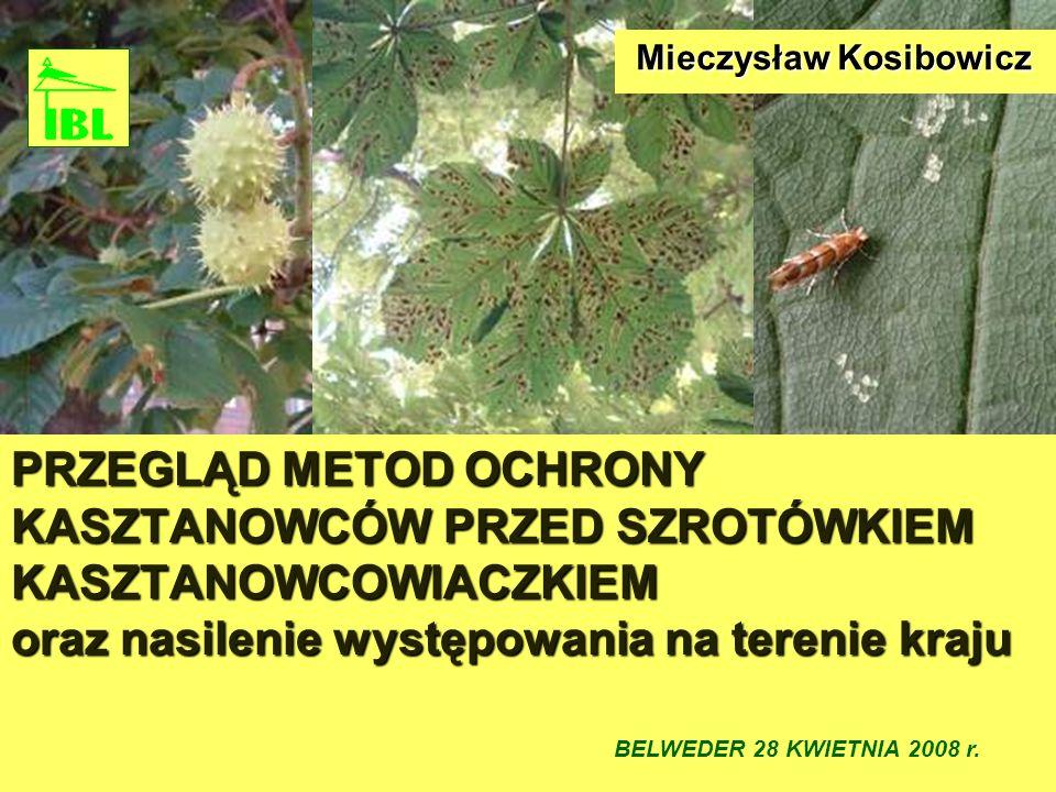 Mieczysław Kosibowicz