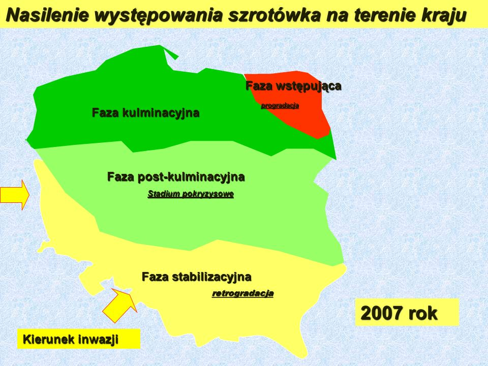 Nasilenie występowania szrotówka na terenie kraju
