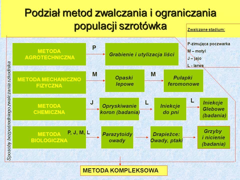 Podział metod zwalczania i ograniczania populacji szrotówka