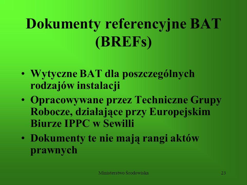 Dokumenty referencyjne BAT (BREFs)